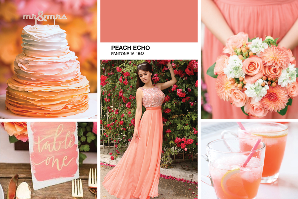 Peach Echo Mood Board